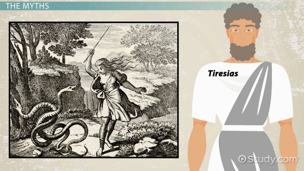 tiresias of the odyssey  mythology  overview