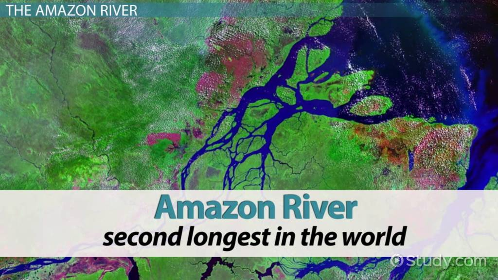 the amazon river location special features amp facts
