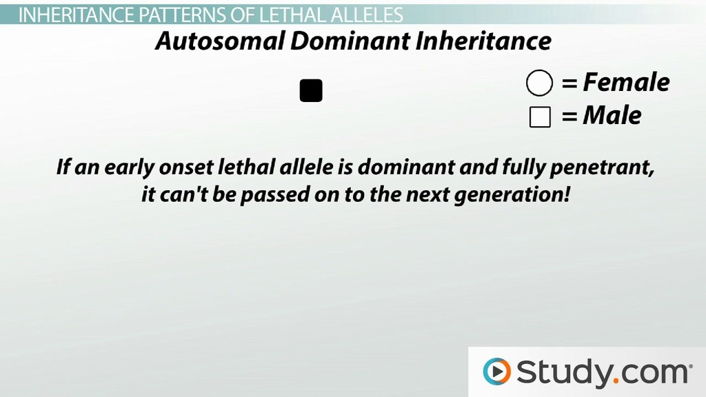 lethal alleles Alleles that cause an organism to die only when present in homozygous condition are called lethal alleles however,.