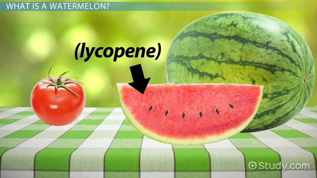 Watermelon Facts Lesson For Kids
