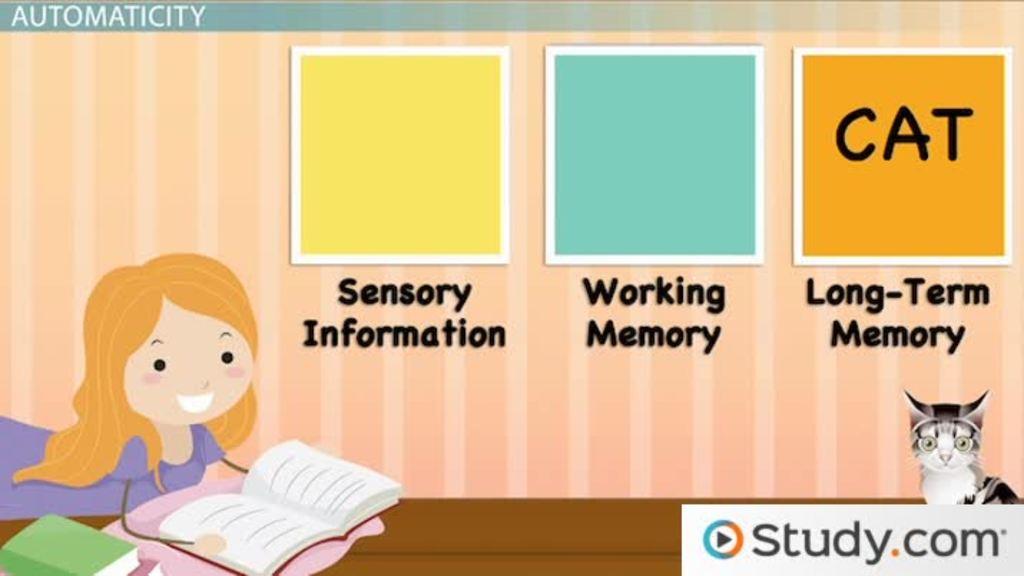sensory case study