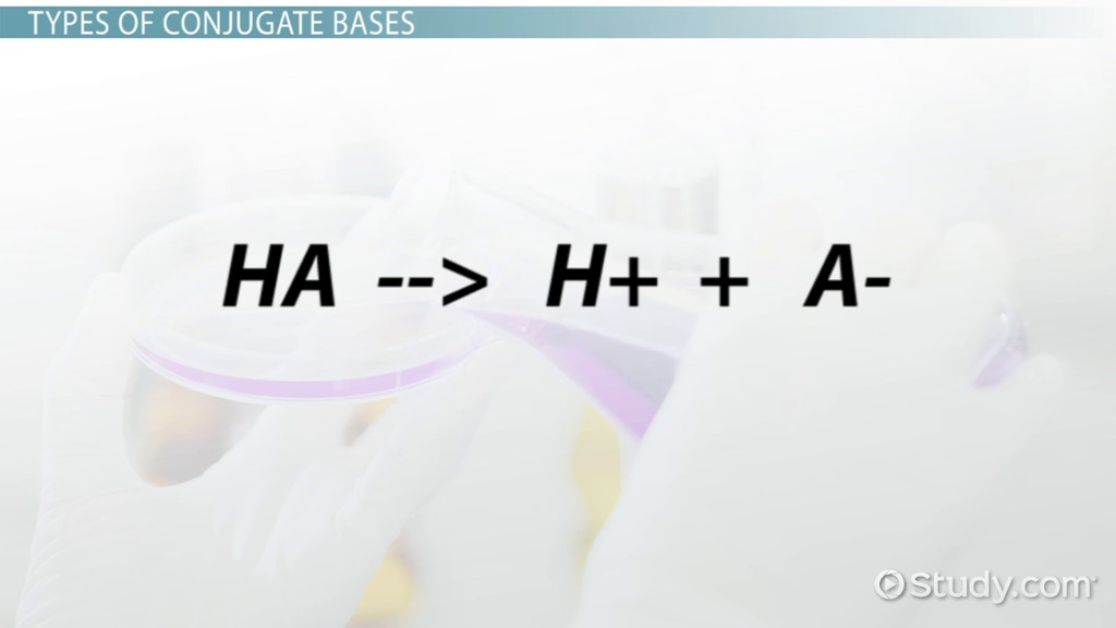 Conjugate Base Definition Overview Video Lesson Transcript