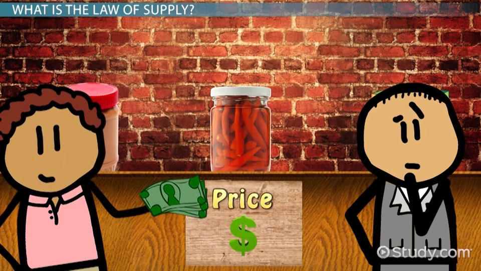 Law Of Supply Definition Example Video Lesson Transcript