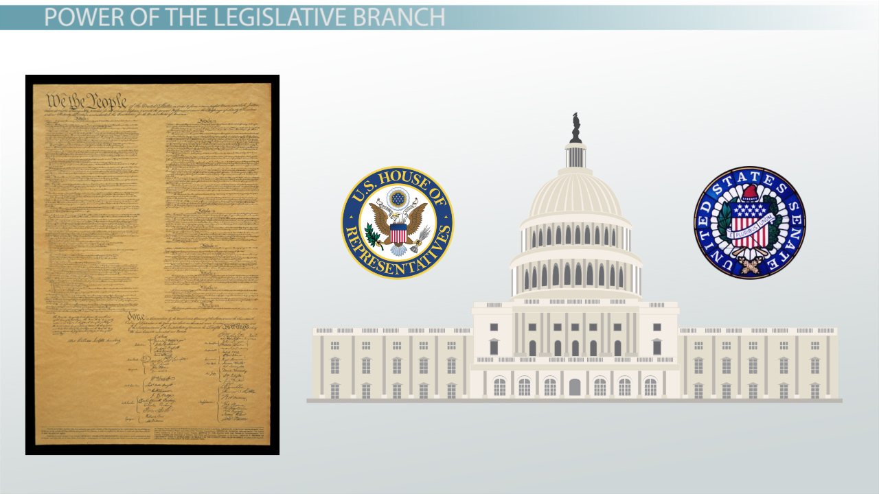 executive branch of government video