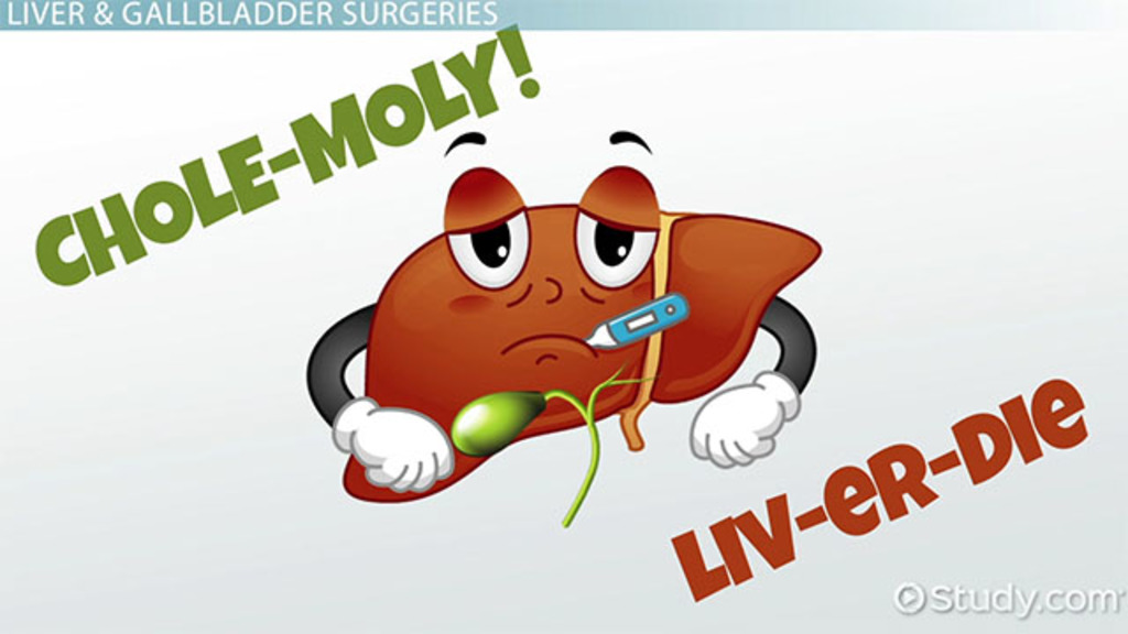 Liver Gallbladder Treatment Terminology Video Lesson