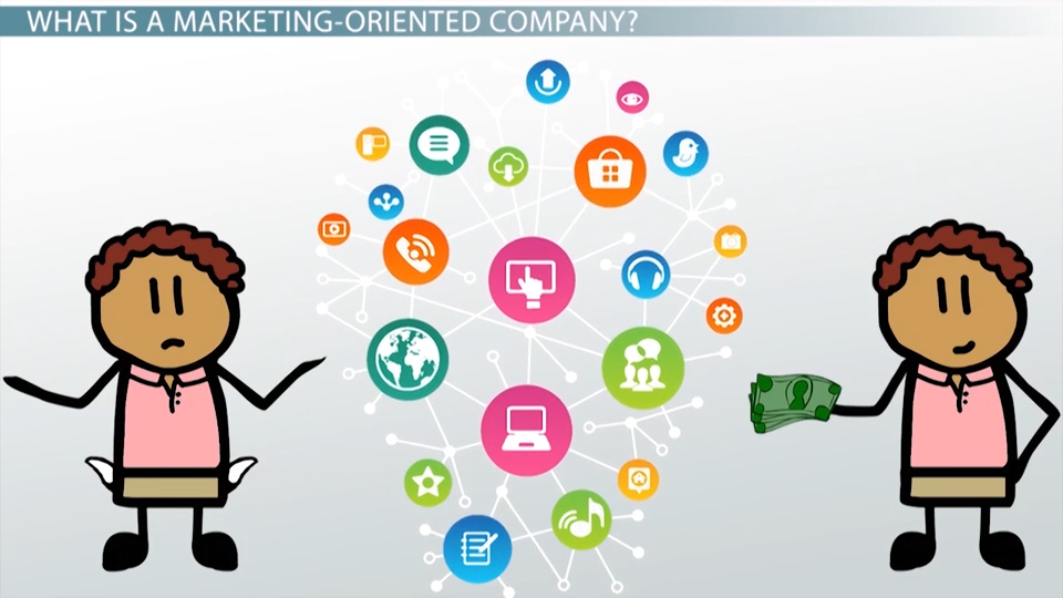 marketing-oriented company  definition  u0026 examples