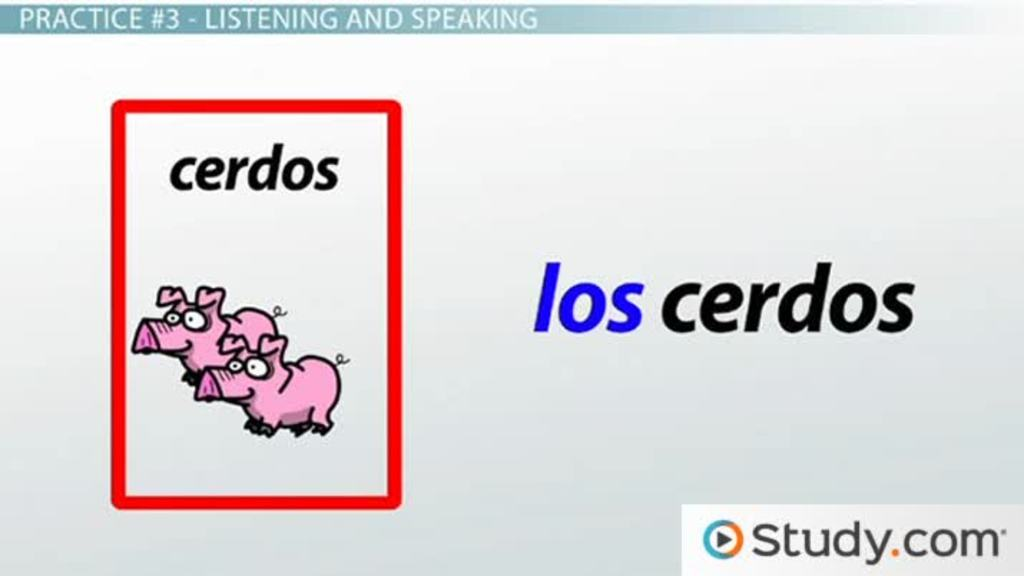 Matching Articles And Nouns Spanish Language Practice Video