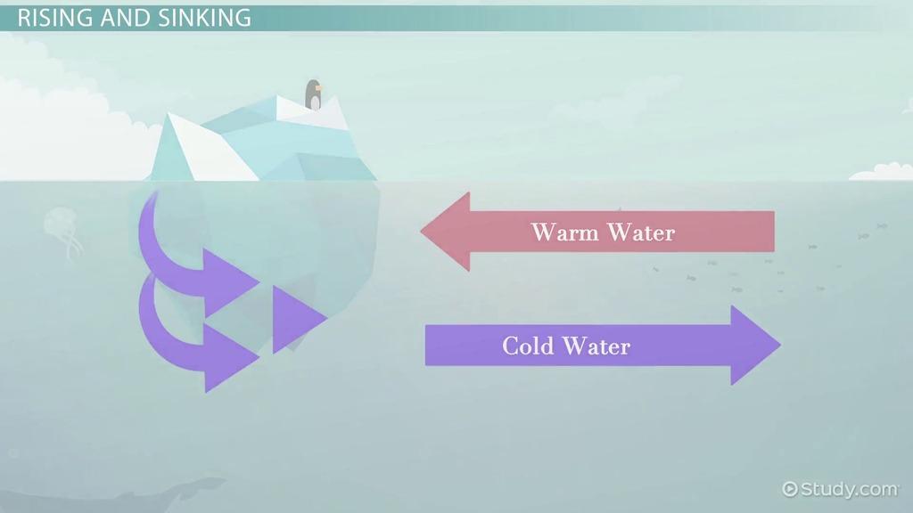 Oceanic General Atmospheric Circulation Video Lesson. Oceanic General Atmospheric Circulation Video Lesson Transcript Study. Worksheet. Ocean Current Worksheet At Clickcart.co