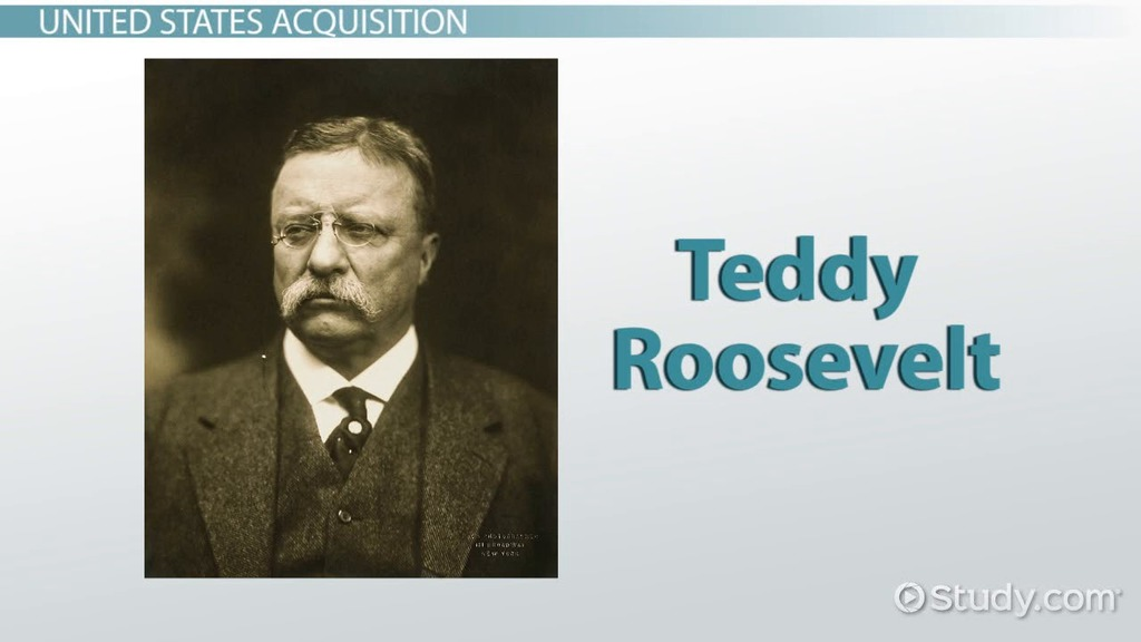 the success of roosevelts foreign policy essay Theodore roosevelts domestic policy is quite a rare and popular topic for writing an despite his success in leadership american foreign policy master essay.
