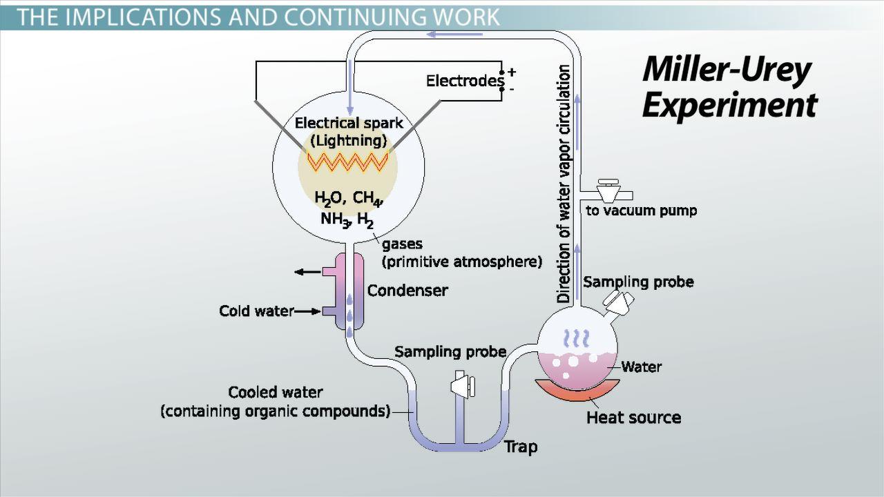 urey and miller experiment