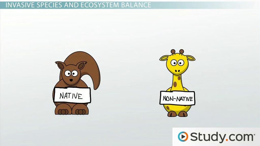 Species Biology