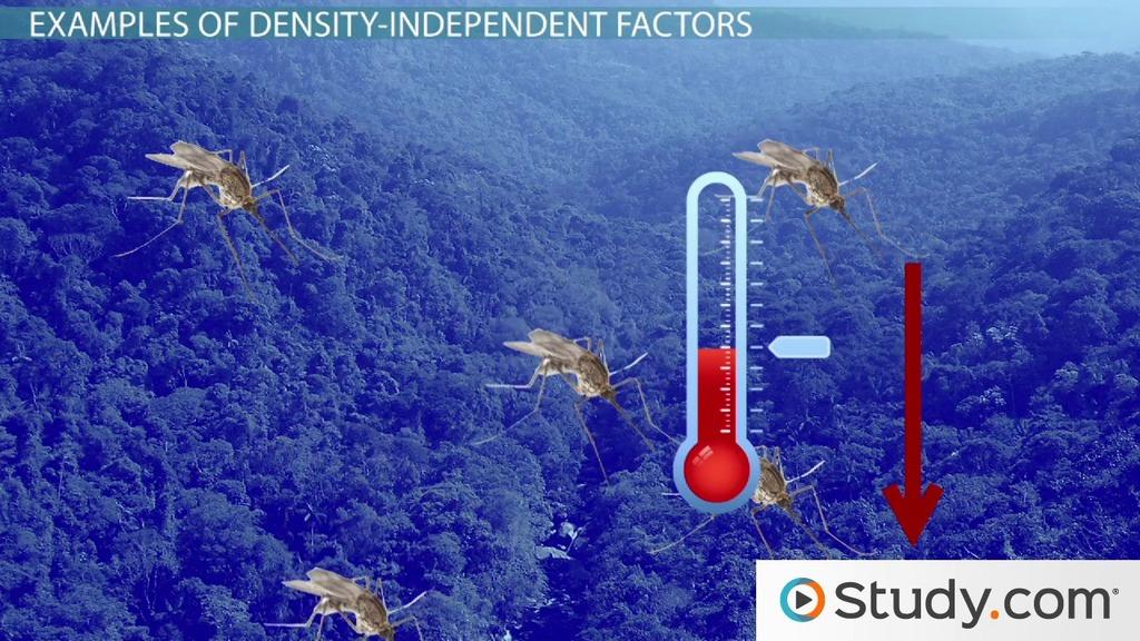 Density-Independent Factors: Examples & Definition - Video & Lesson Transcript | Study.com