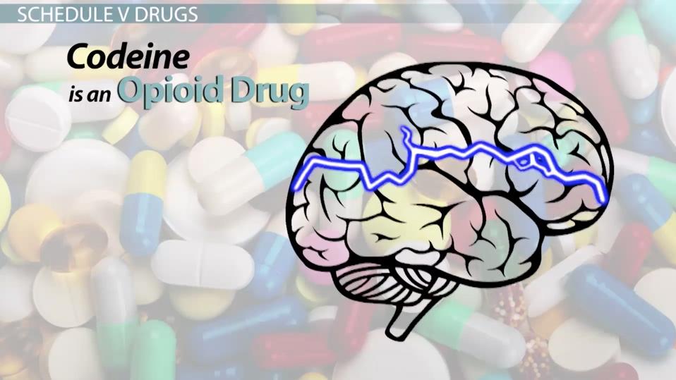 Schedule V Drug Classification Amp Drug List Video