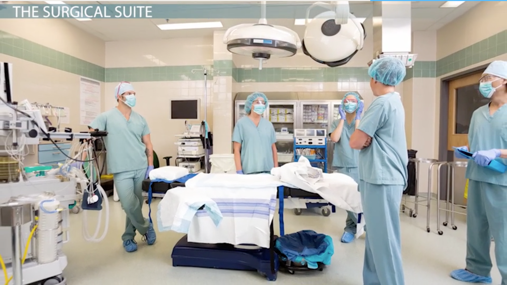 The Surgical Suite In A Veterinary Hospital Video