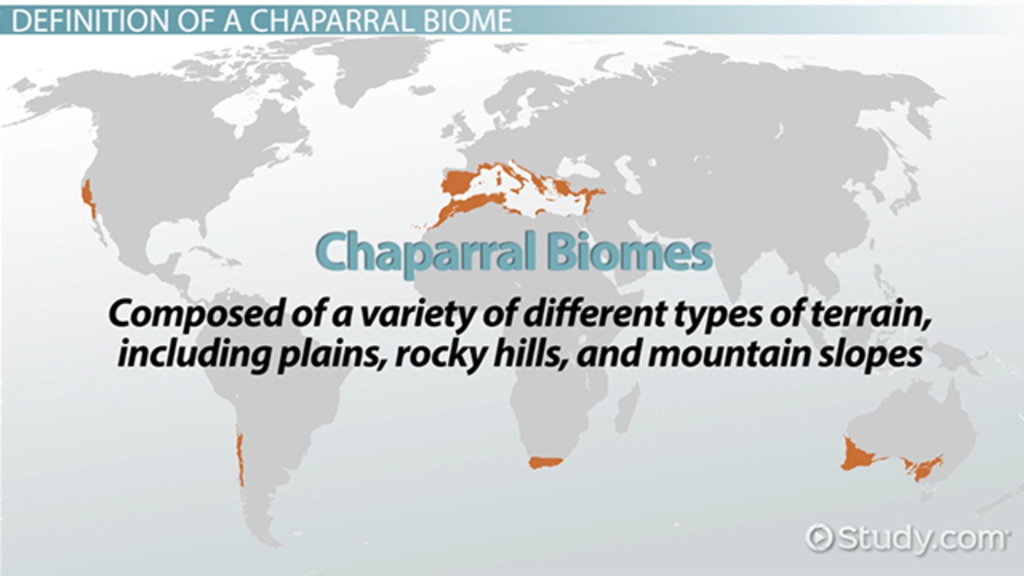 Chaparral World Map.Chaparral Biome Definition Locations Video Lesson Transcript