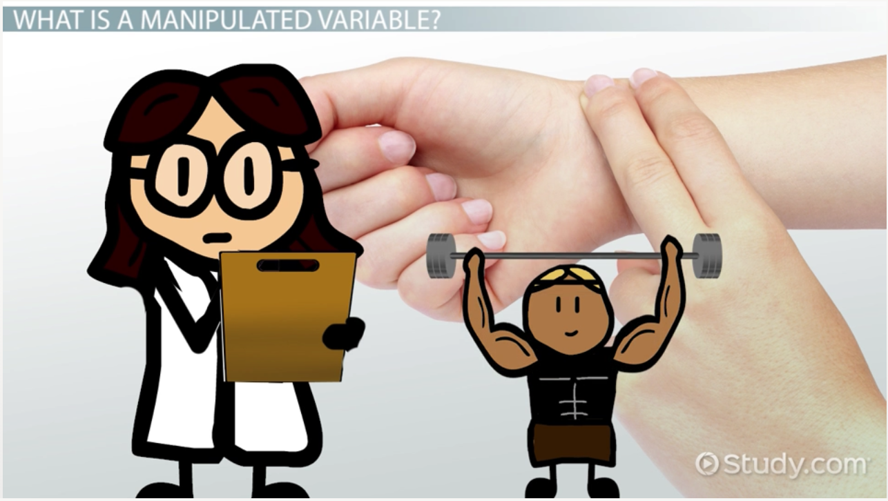 What is Qualitative Observation? - Definition & Example - Video ...
