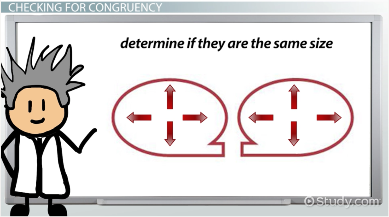 congruent in math  definition  u0026 examples