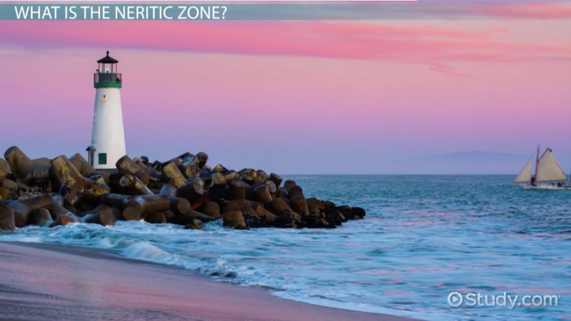 neritic zone  definition  organisms  u0026 climate