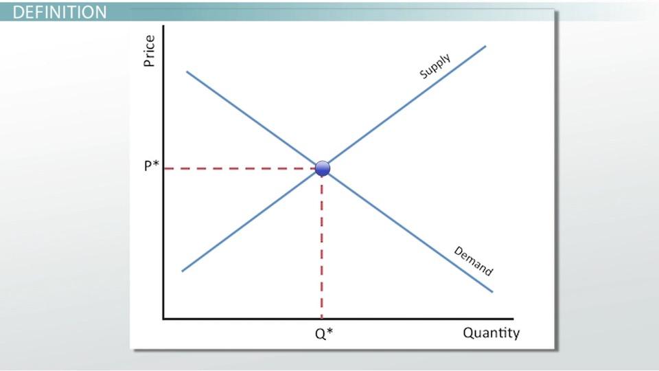 Biology equilibrium psychology sydney