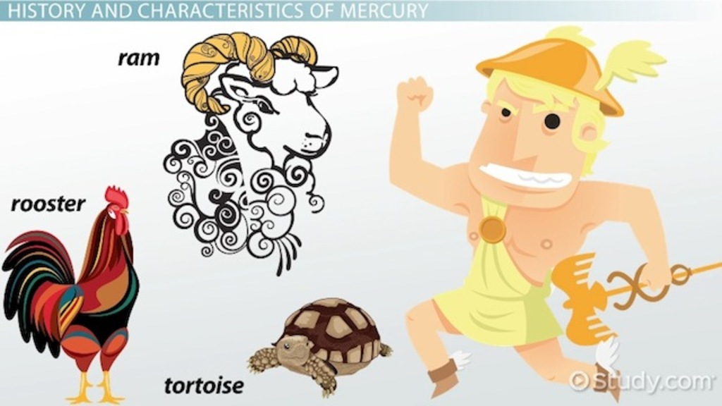 The Roman God Mercury Facts Symbol Video Lesson Transcript