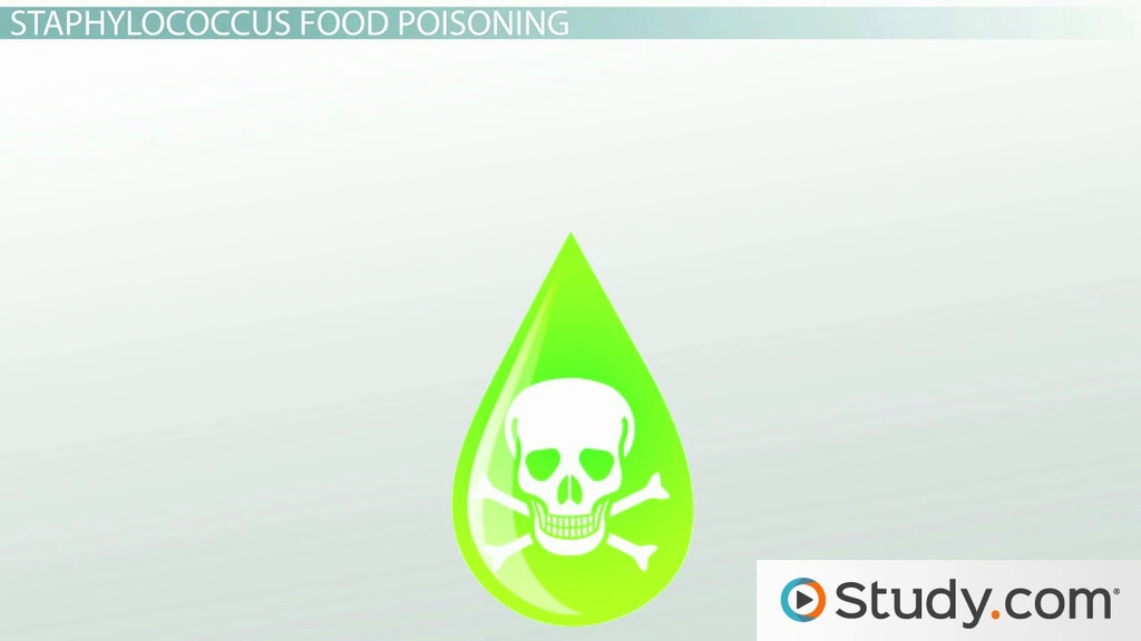 Food poisoning from staphylococcus aureus bacteria video food poisoning from staphylococcus aureus bacteria video lesson transcript study fandeluxe Images