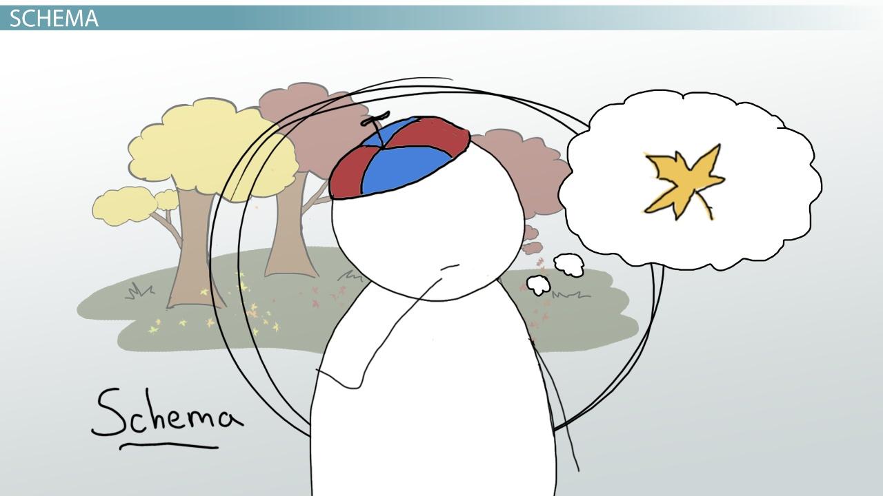 Using Schemata in Education - Video & Lesson Transcript ...