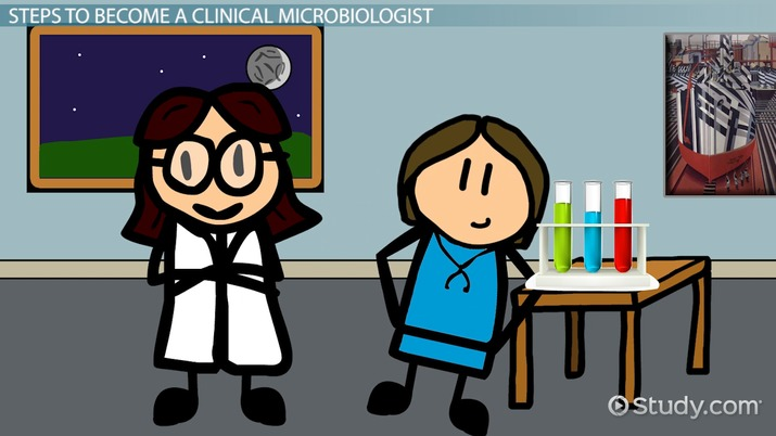 How to Become a Clinical Microbiologist: Education and