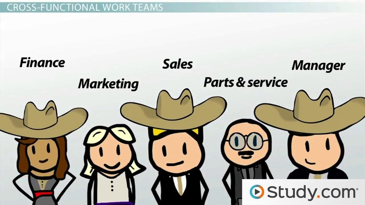 Types of Work Teams: Functional, Cross-Functional & Self-Directed