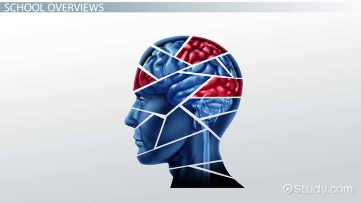 Top Behavioral Psychology Schools List Of Top Schools