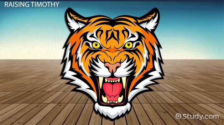 i am a tiger essay