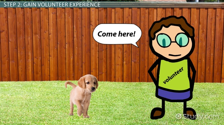 How to Become a Seeing-Eye Dog Trainer: Career Guide