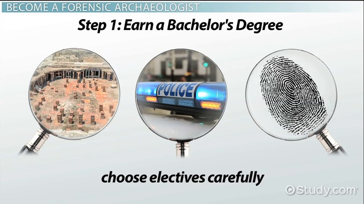 Become A Forensic Archaeologist Education And Career Roadmap
