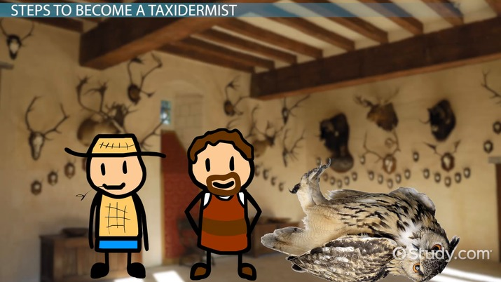 How to Become a Taxidermist: Education and Career Roadmap