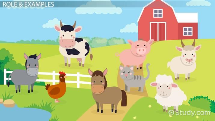 Propaganda in Animal Farm: Role & Examples - Video & Lesson