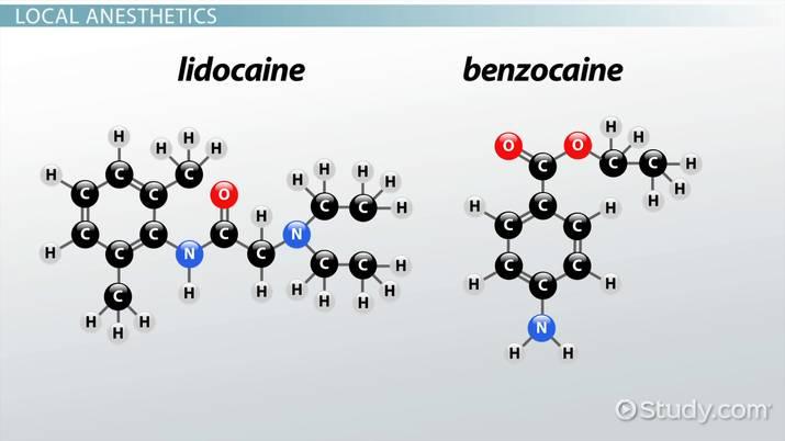 Lidocaine vs  Benzocaine - Video & Lesson Transcript | Study com