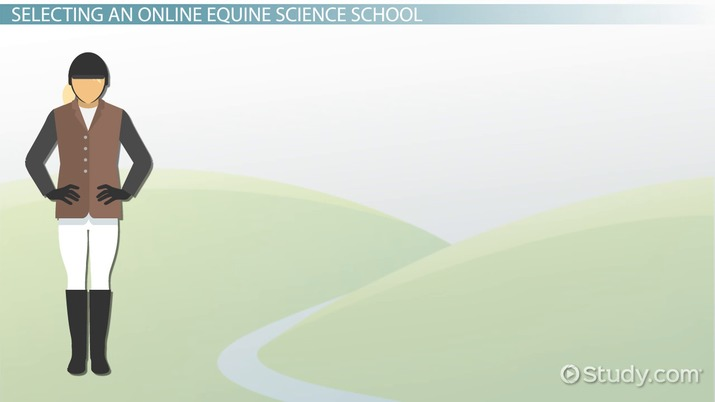 Equine Science Online Schools: How to Choose