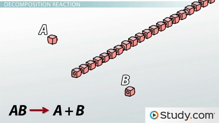 Biochemical Reactions Synthesis And Decomposition Video