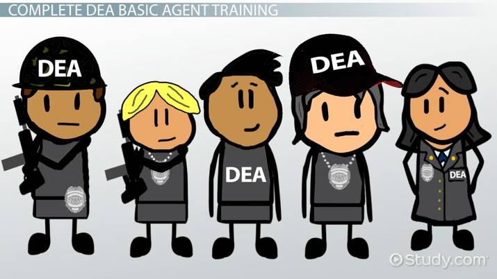 How to Become a DEA Agent: Job Requirements, Qualifications