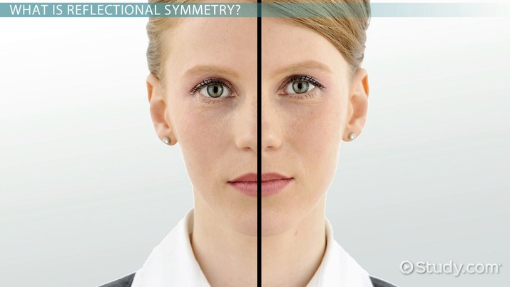 Drawing Lines Of Symmetry Free Worksheets : Reflectional symmetry definition examples video lesson