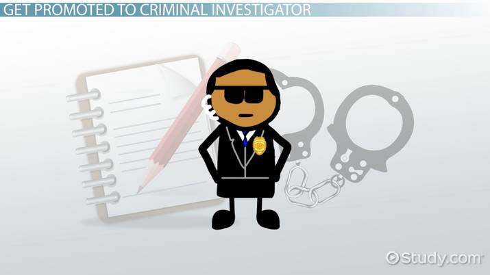 Become A Criminal Investigator Step By Career Guide