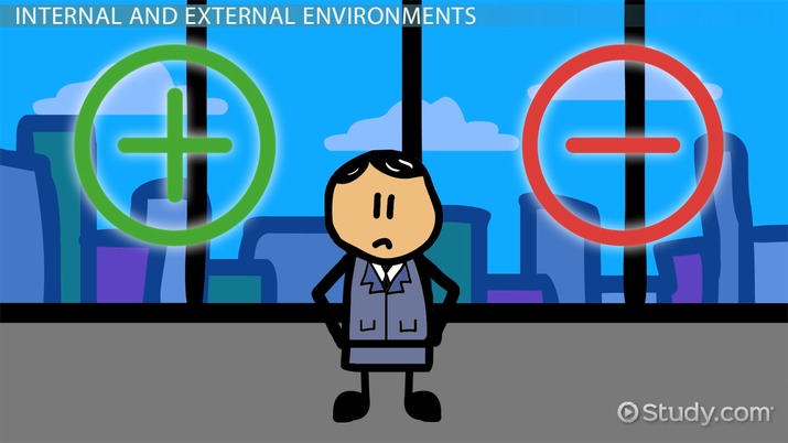 how external environment affect the organisation