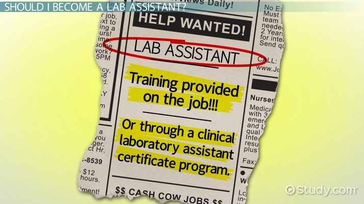 how to become a lab assistant step by step career guide rh study com