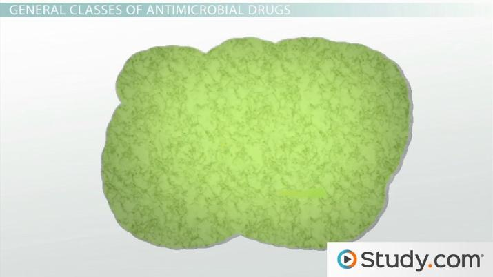 Antibiotics and Antimicrobial Drugs: Selective Toxicity, Classes and