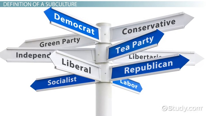 image regarding Political Party Quiz for Students Printable referred to as Political Subcultures: Definition Illustrations - Movie