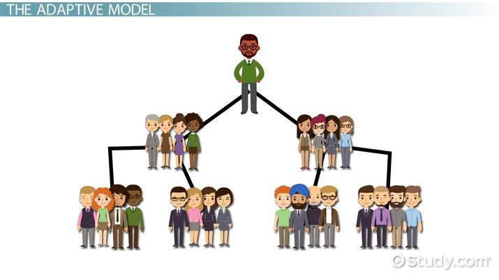 hierarchical vs  adaptive organizational structures