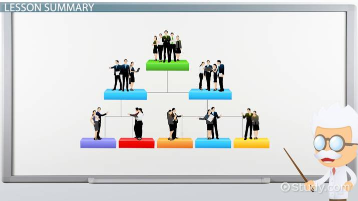 Organizational Structure: Definition, Types & Examples