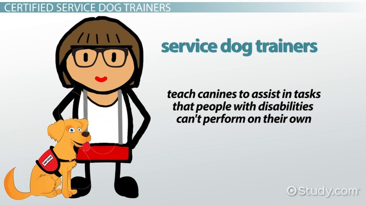 certified service dog trainer: certification & career roadmap