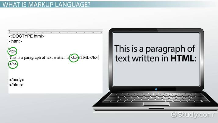Markup Language Definition Examples Video Lesson Transcript