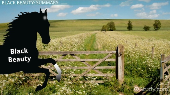 Black Beauty: Summary, Main Characters & Author - Video & Lesson