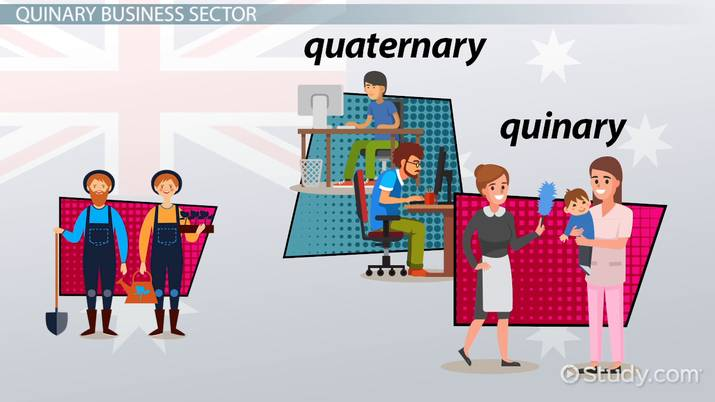 quinary sector of industry  definition  u0026 examples